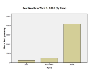 real wealth by race